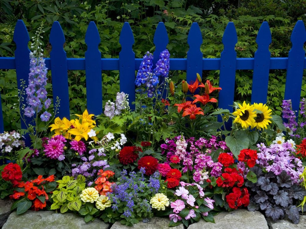 Natural Flower Garden : What is a natural beauty days of thoughts by blonde